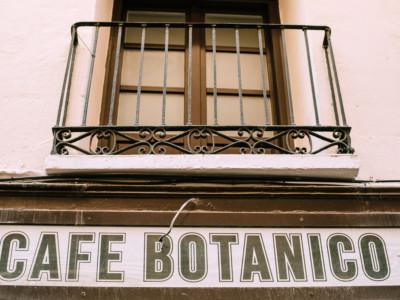 cafe botanico